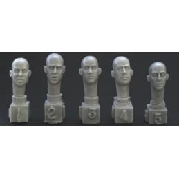 HOR-HH06 1/35  5 different European bald heads
