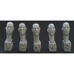HOR-HH14 1/35 5 different heads. Snarling. gasping