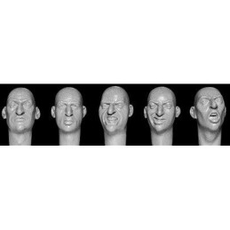 HOR-HH28 1/35  5 Heads, Bare Heads with Prominent Noses