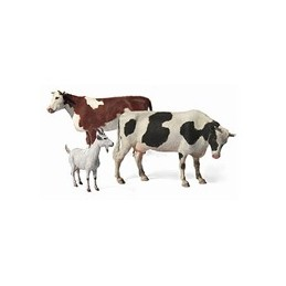 MB-3566 1/35 Domestic Animals