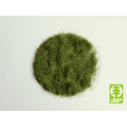 MS-004-03 Model Scene 004-03 Grass-Flock 4,5 mm - Early Summer 50g