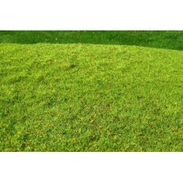 MS-F001 Model Scene F001 grass mats standard (18x28cm).Cut Meadow - Spring