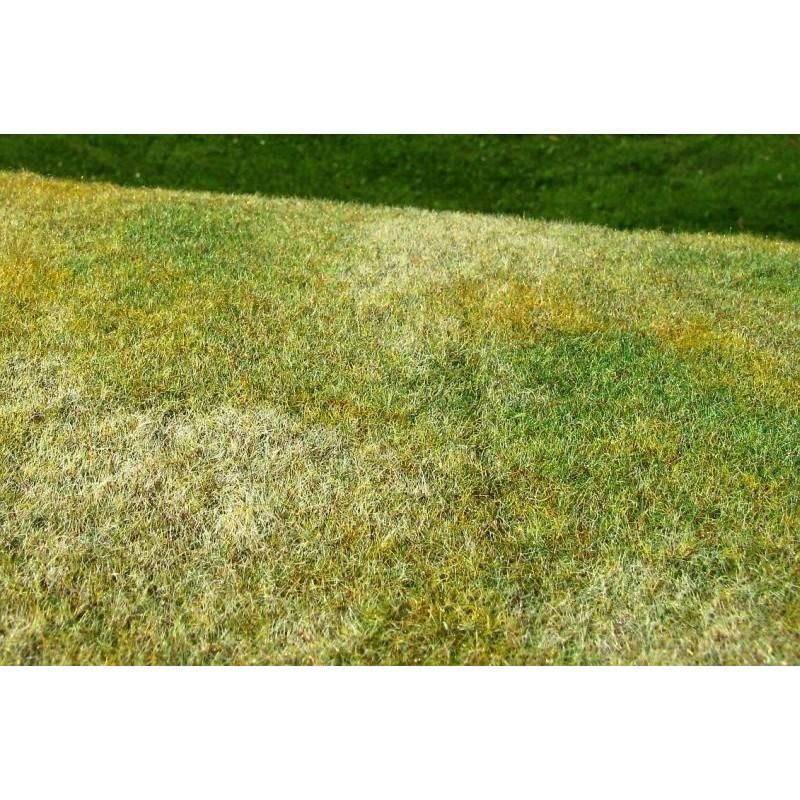 MS-F003 Model Scene F003 grass mats standard (18x28cm).Cut Meadow - Late summer
