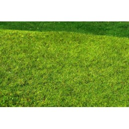 MS-F021 Model Scene F021 grass mats standard (18x28cm).Meadow - High-grown, Spring