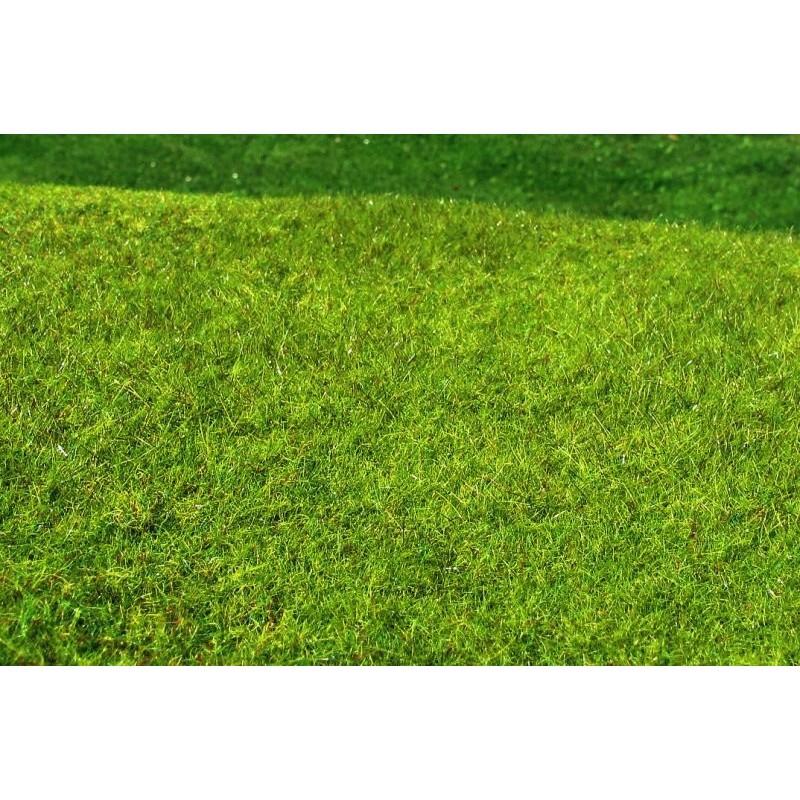 MS-F021 Model Scene F021 grass mats standard (18x28cm).Meadow - High-grown, Spring