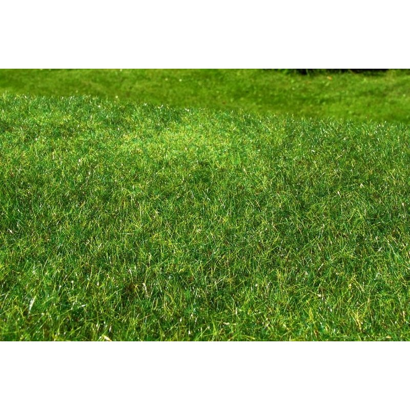 MS-F022 Model Scene F022 grass mats standard (18x28cm).Meadow - High-grown, Early summer