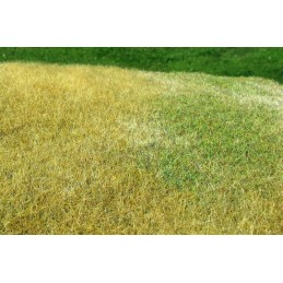 MS-F023 Model Scene F023 grass mats standard (18x28cm).Meadow - High-Model Scene F023 grown, Late summer