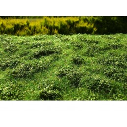 MS-F502 Model Scene F502 grass mats premium 18x28cm.Low bushes - Early summer