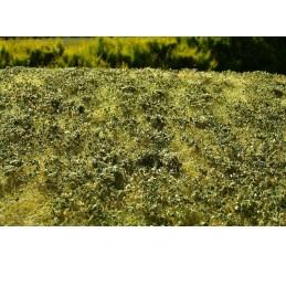 MS-F503 Model Scene F503 grass mats premium 18x28cm.Low bushes - Late summer