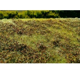 MS-F510 Model Scene F510 grass mats premium 18x28cm.Low bushes - Autumn Colour