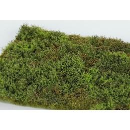 MS-F571 Model Scene F571 grass mats premium 18x28cm.Wild area with bushes - spring