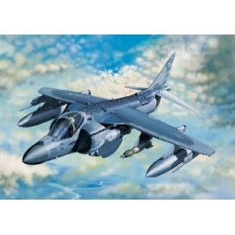 TRU-02286 Trumpeter 02286 1/32 McDonnell-Douglas AV-8B Harrier II Plus. Calcas espanolas