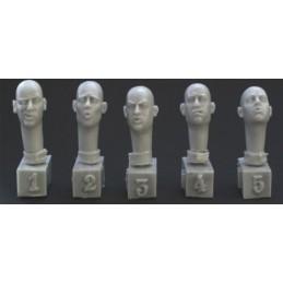 HOR-HH15 1/35 5 heads....