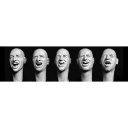HOR-HH27 1/35 bald heads...